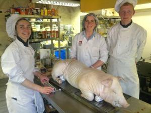 Pig at Belfry